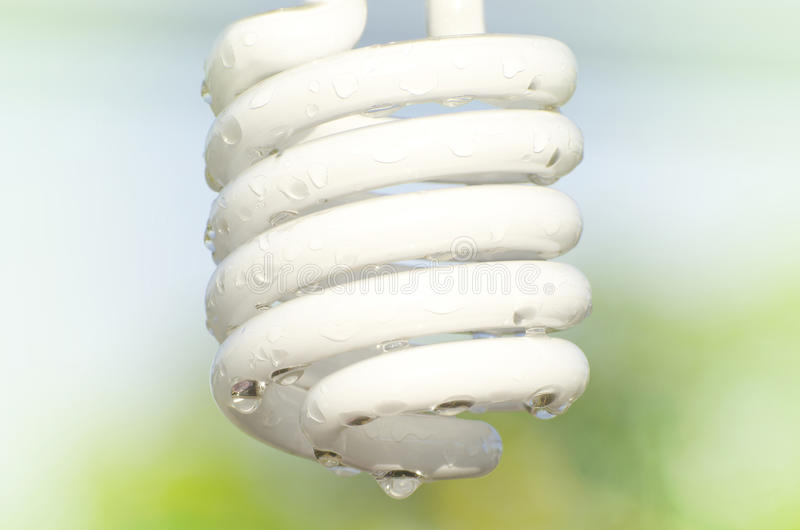 Wet bulb stock photos