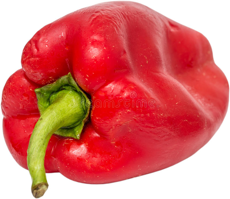 Download Wet Capsicum Stock Images - Image: 26788074
