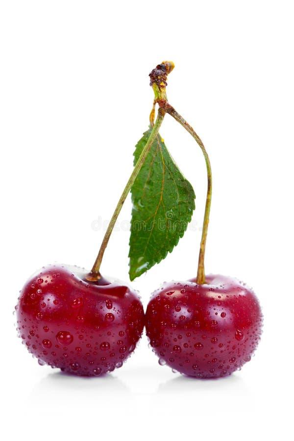 Download Wet cherries stock photo. Image of fresh, tasty, diet - 20813850