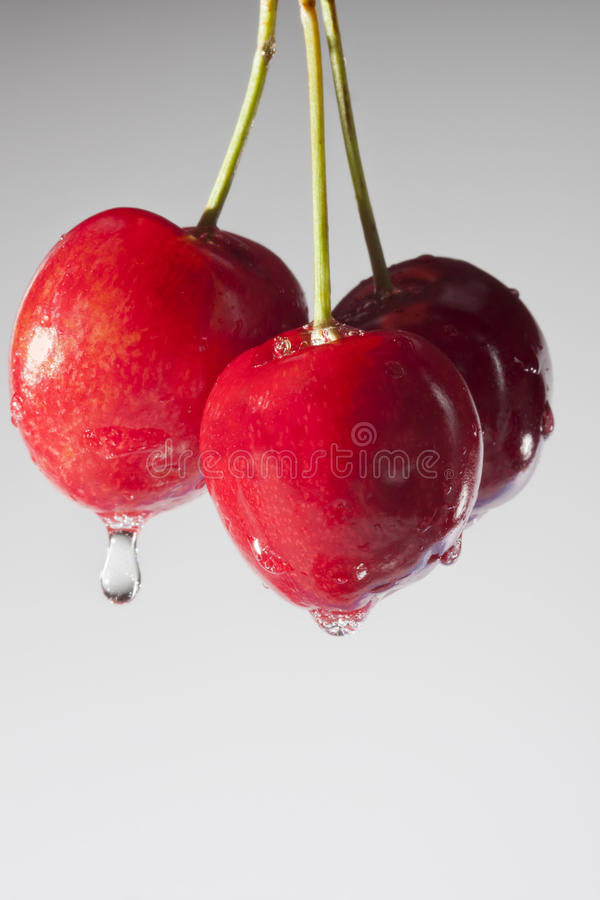 Free Wet Cherries Royalty Free Stock Photos - 27316428