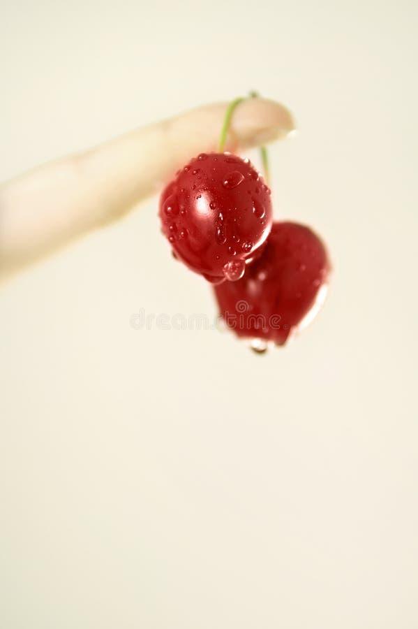 Wet cherry stock image