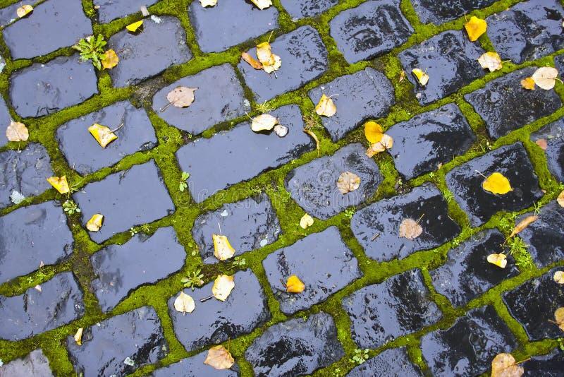 Wet Cobblestone Royalty Free Stock Image