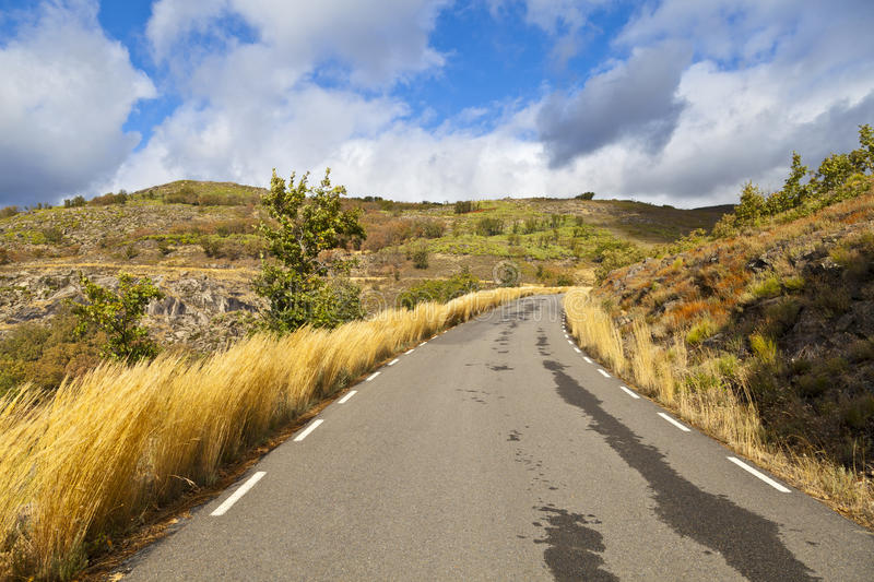 Download Wet Country Road stock photo. Image of country, color - 21868710