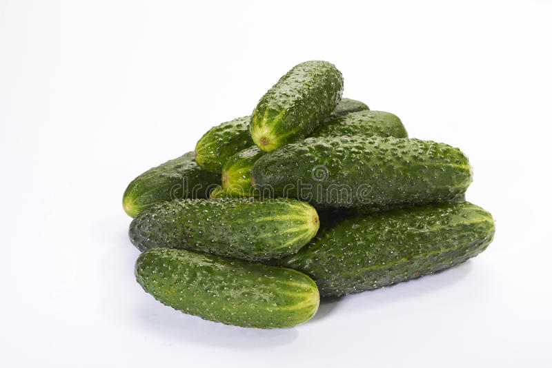 Wet cucumber. Isolate green white royalty free stock photography