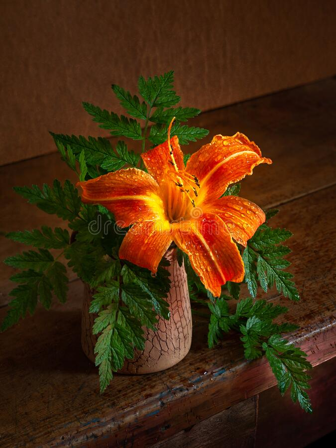 Free Wet Daylily In A Vase On A Wooden Table. Day-lily Flower In Drops Of Water On A Dark Background. Still Life With Flowers In A Stock Photo - 193155970