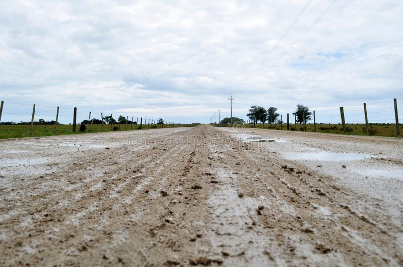 Wet Dirt Road. Valizas rocha uruguay travel destinations scenic south america latin cow field nobody royalty free stock image
