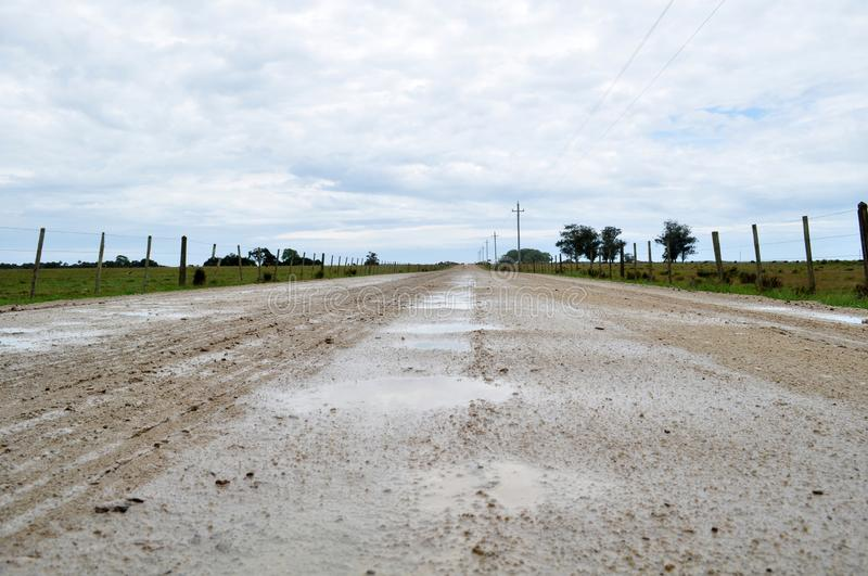 Wet Dirt Road. Valizas rocha uruguay travel destinations scenic south america latin cow field nobody royalty free stock images