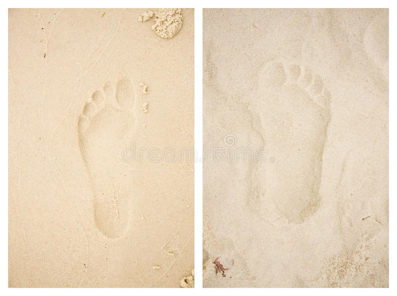 Download Wet / Dry Beach Footprints stock photo. Image of prints - 14537614