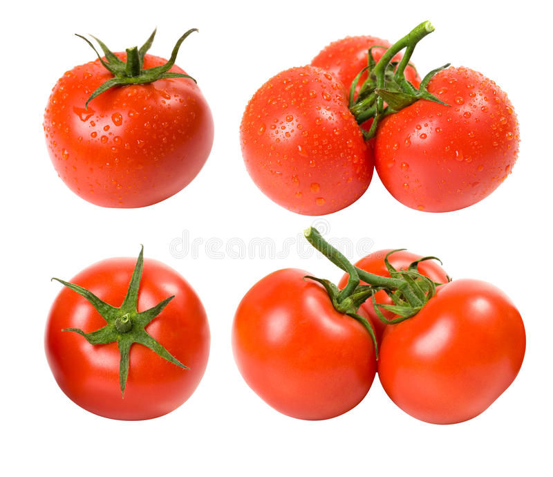 Download Wet and dry tomatoes set stock photo. Image of fresh - 25271558