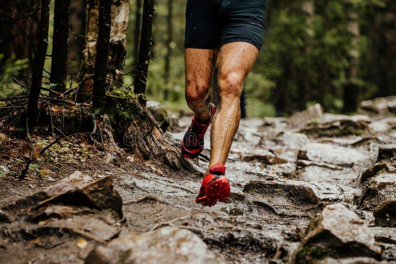 Wet feet runner athlete. Running on trail stones in forest stock photo