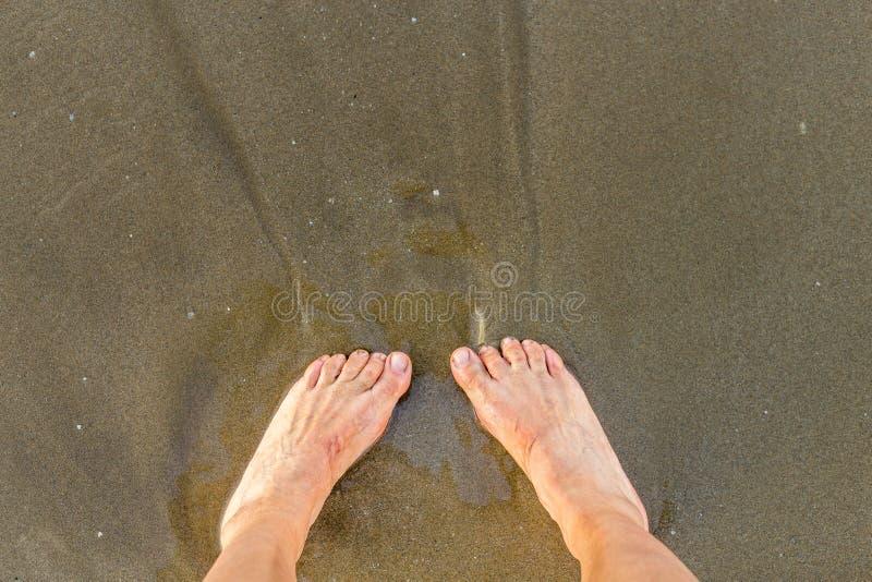 Wet feet on seaside. Female wet feet on seaside royalty free stock image