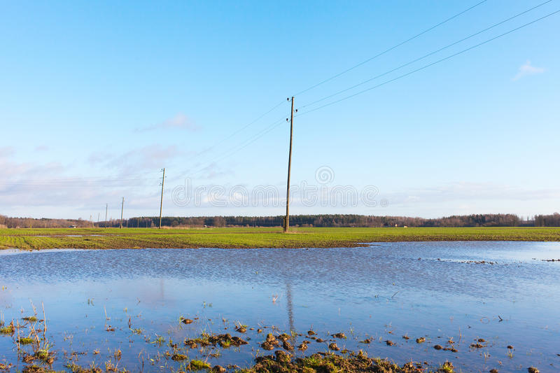 Wet Field. Royalty Free Stock Image