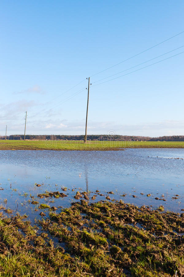 Download Wet field. stock photo. Image of cultivate, damage, flood - 35756848