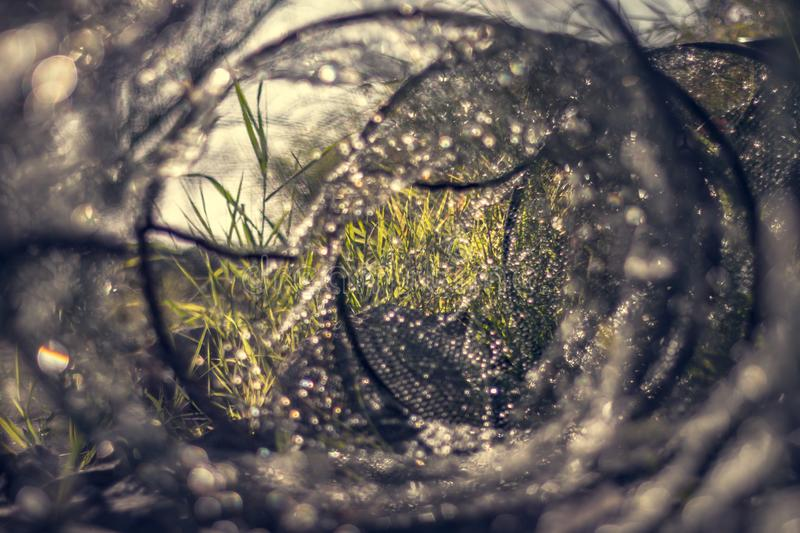 A wet fishing net photographed from the inside with a blurred background on a sunny day vector illustration