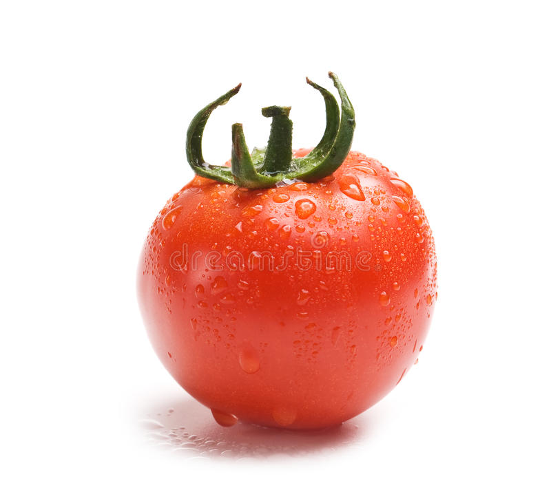 Download Wet fresh tomato stock image. Image of brightly, descriptive - 14930761
