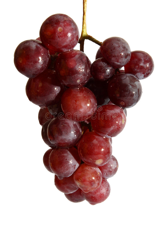 Free Wet Grape Berry Bunch Stock Photography - 7506022