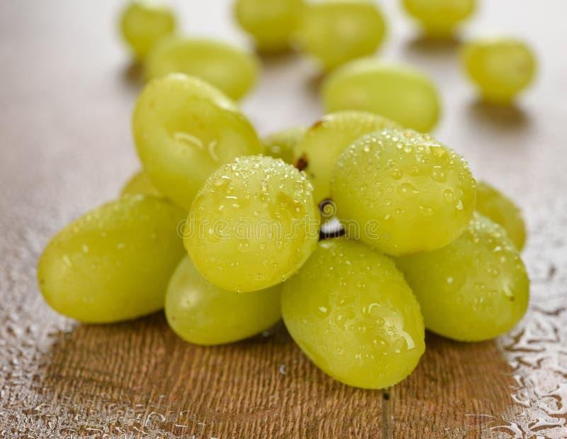 Download Wet grapes stock photo. Image of fruit, organic, fresh - 32780602
