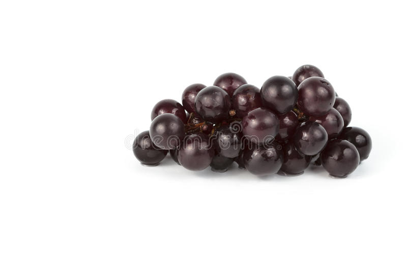 Download Wet grapes  on white stock image. Image of color, branch - 25965755
