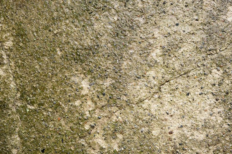 wet gray cement, full frame royalty free stock photos