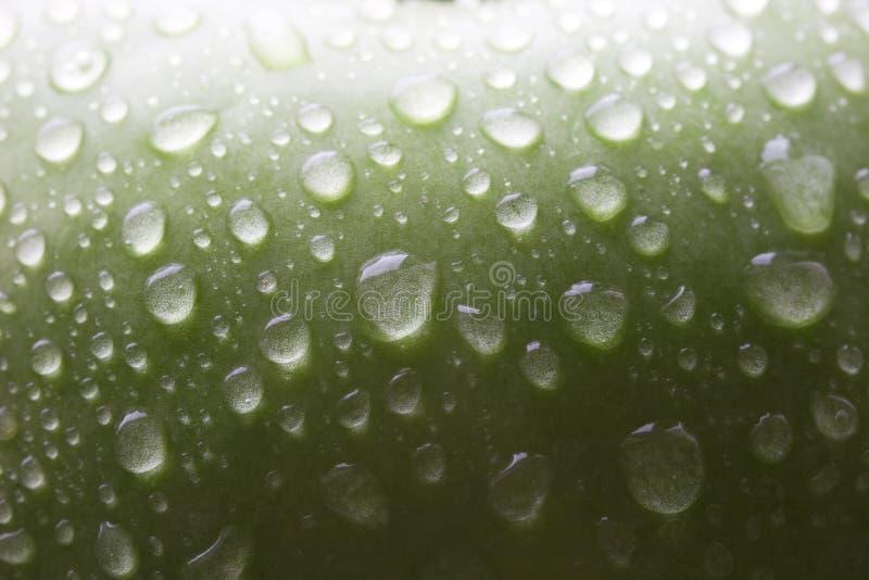 Wet green apple stock images
