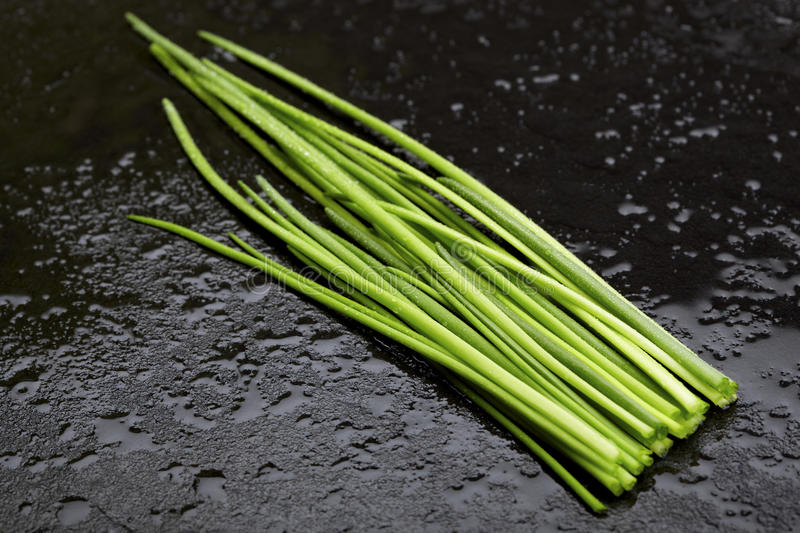 Download Wet green chives stock photo. Image of fresh, kitchen - 27120584