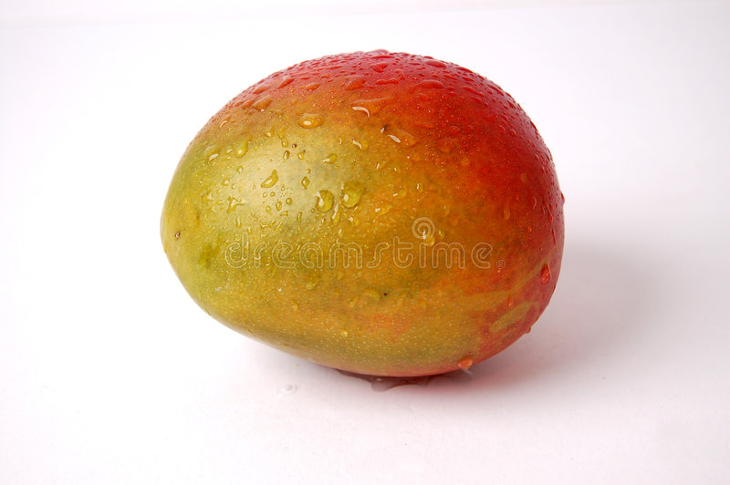 Download Wet Juicy Mango stock image. Image of good, isolated, health - 471557