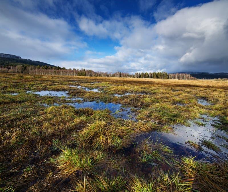 Wet landskap arkivbilder