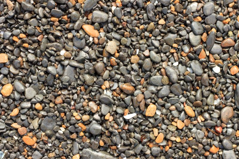 Wet multi-colored sea pebbles on the shore royalty free stock photo