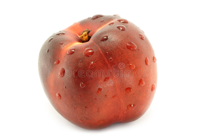 Wet Nectarine Royalty Free Stock Images
