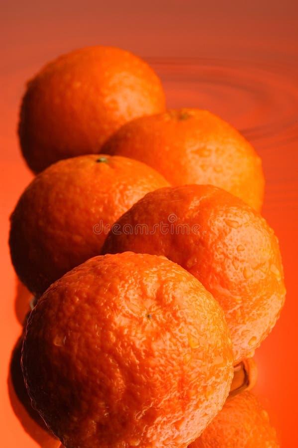 Download Wet orange #2 stock image. Image of sweet, surface, appetizing - 1910641
