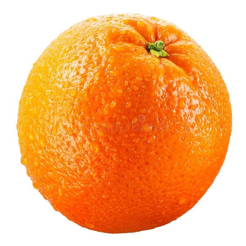 Free Wet Orange Fruit Isolated On White Clipping Path Stock Photos - 23331223