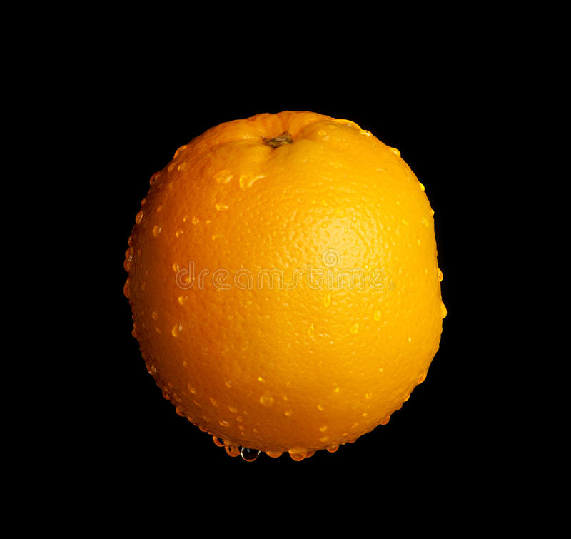 Download Wet Orange stock photo. Image of drops, colored, isolated - 35306650