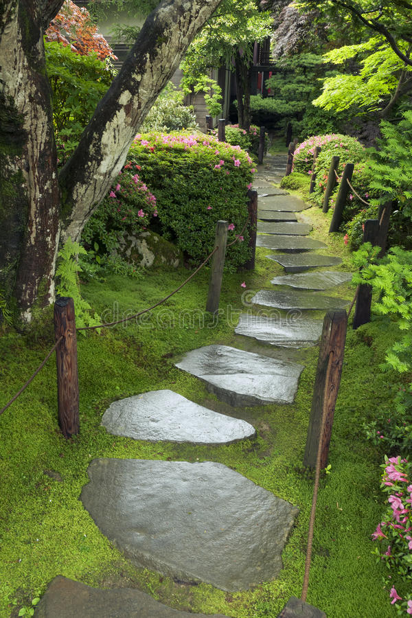 Download Wet pathway stock image. Image of nobody, mossy, landscape - 29252719