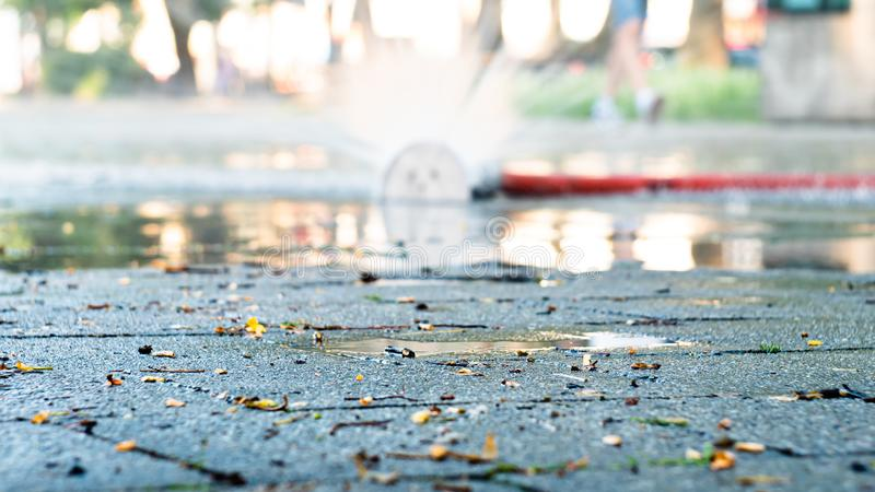 Wet pavement. Old punctured portable hose for pumping water with fountains of flowing water along the entire length. Wet pavement. Old punctured portable hose royalty free stock photography