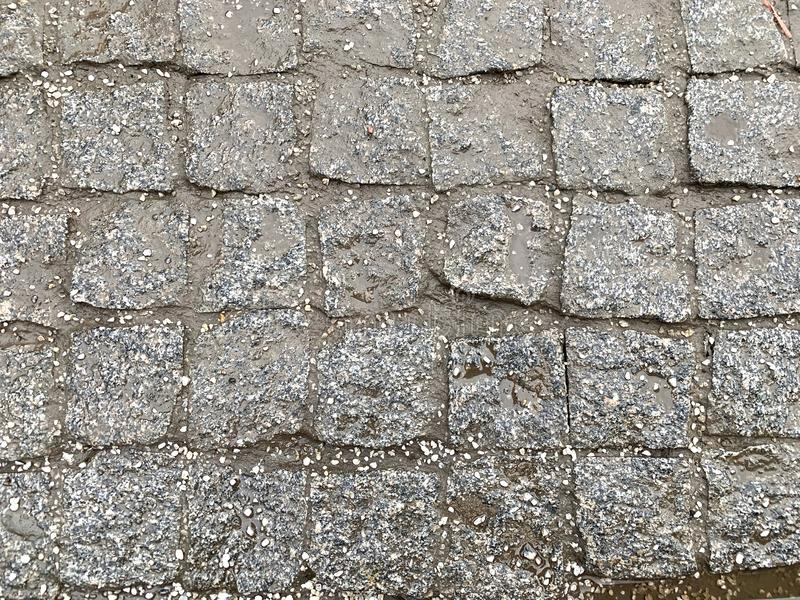 Wet paving slab, after rain stock photography