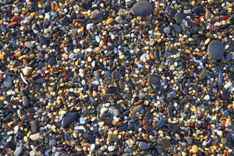 Wet pebbles and shells background royalty free stock images