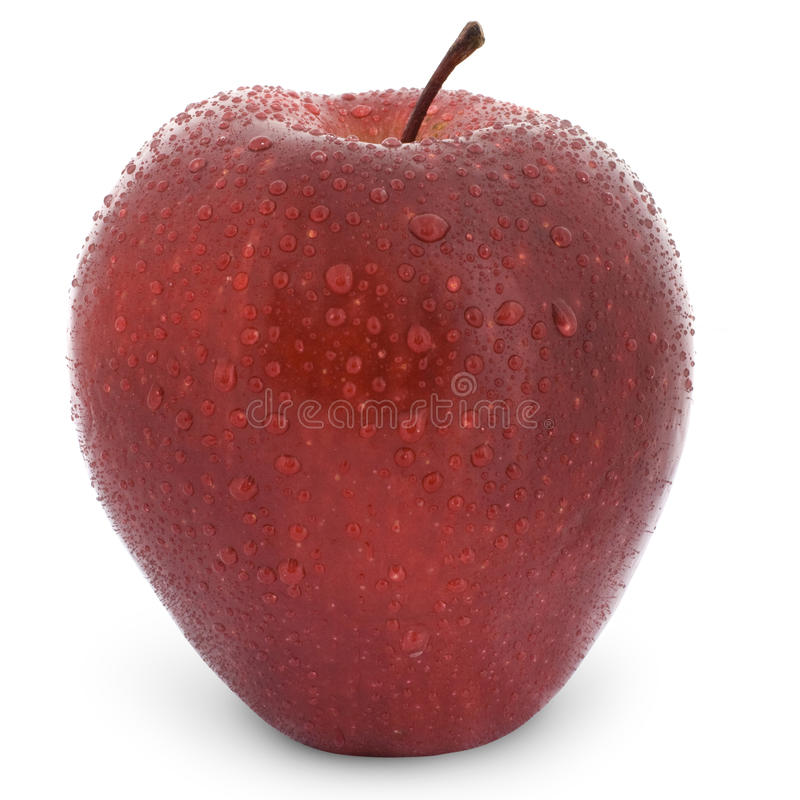 Download Wet red apple stock photo. Image of agriculture, macro - 17960336