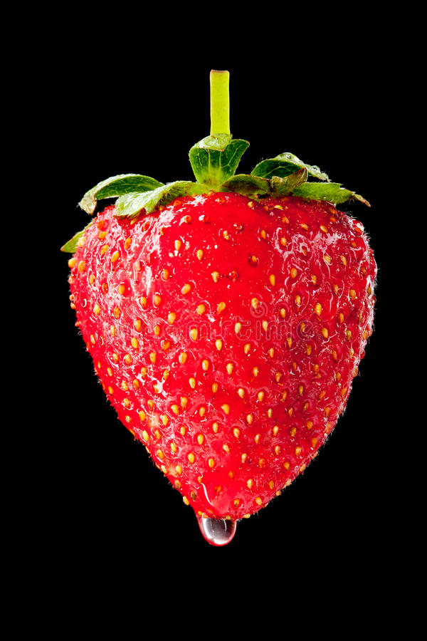 Download Wet ripe strawberry stock image. Image of healthy, macro - 19849519