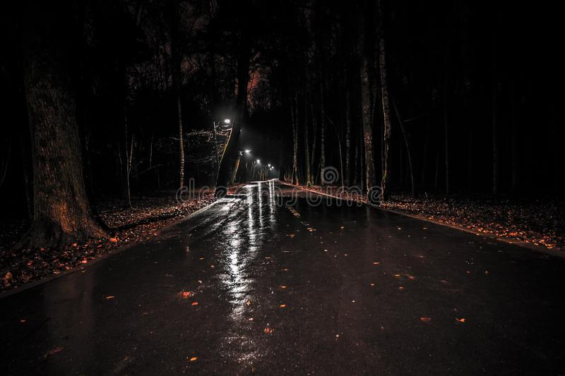 wet road with lanterns in the park after rain at night. gloomy dark landscape of a walkway in a city park. autumn deserted forest royalty free stock image