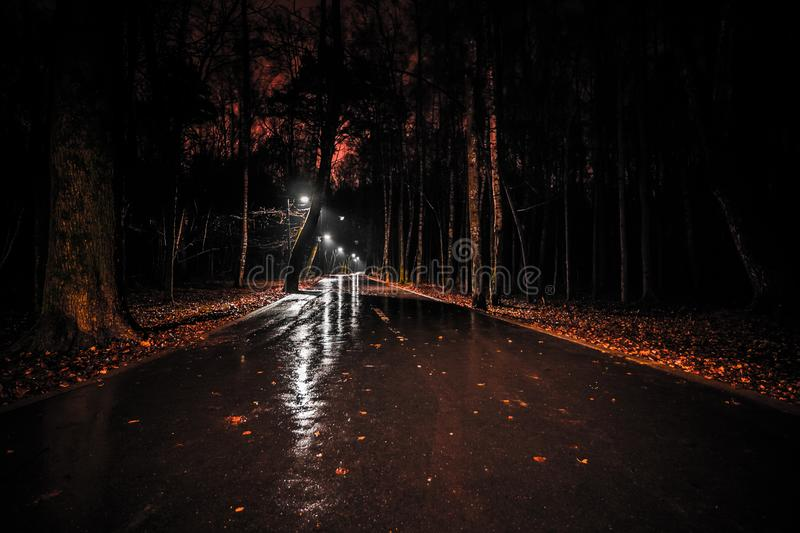 Wet road with lanterns in the park after rain at night. gloomy dark landscape of a walkway in a city park. autumn deserted forest. Wet road with lanterns in the stock images