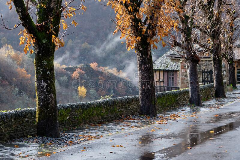 Rain and fog on tree path along village road, in the background dressed autumn forest, Conques, France. Wet road with trees on the sides, in the background stock image