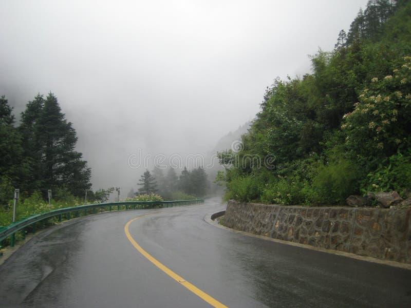 Wet road. Twist. Misty morning. stock photos