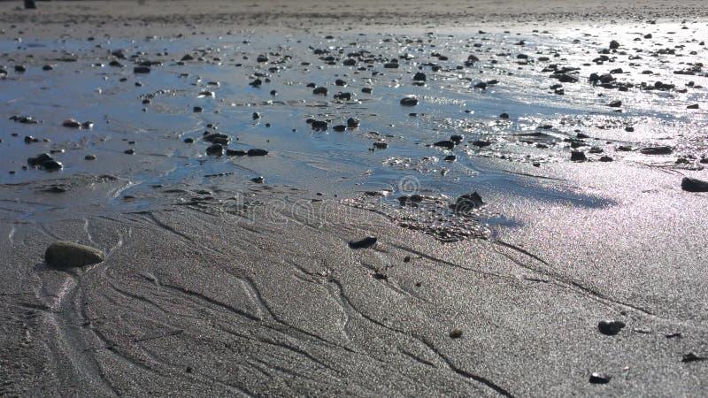 Wet rocky beach stock photo
