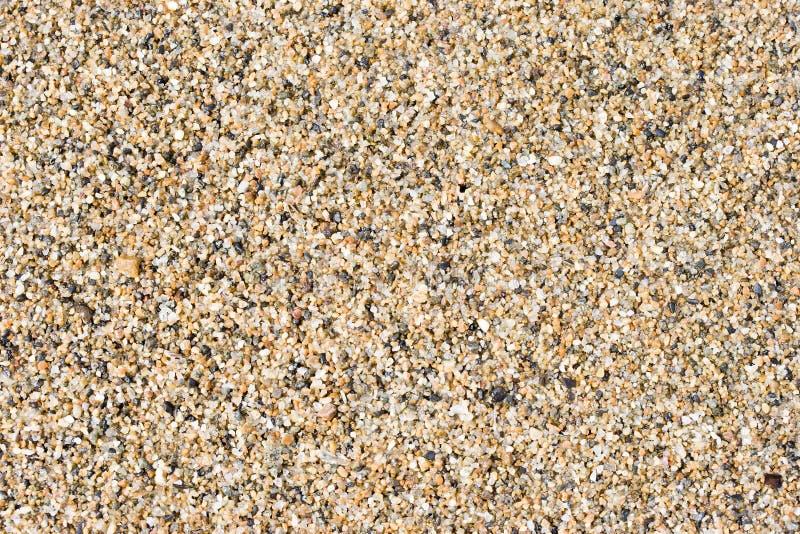 Download Wet sand stock image. Image of grain, water, colour, macro - 6038919