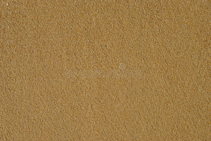 Download Wet Sand stock photo. Image of summer, minuscule, background - 9781504