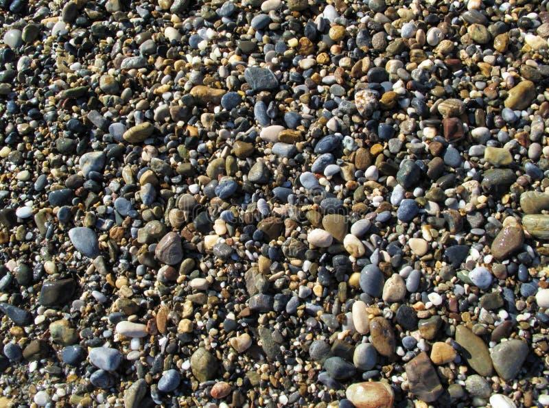 Wet sea pebbles on the beach stock photo