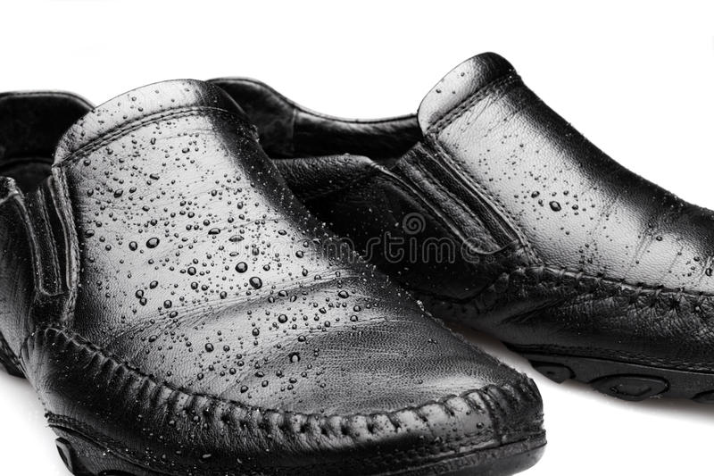 Download Wet Shoes stock photo. Image of beauty, leather, health - 30819882