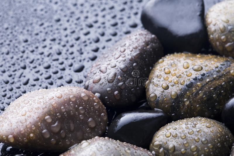 Wet stones. stock photo