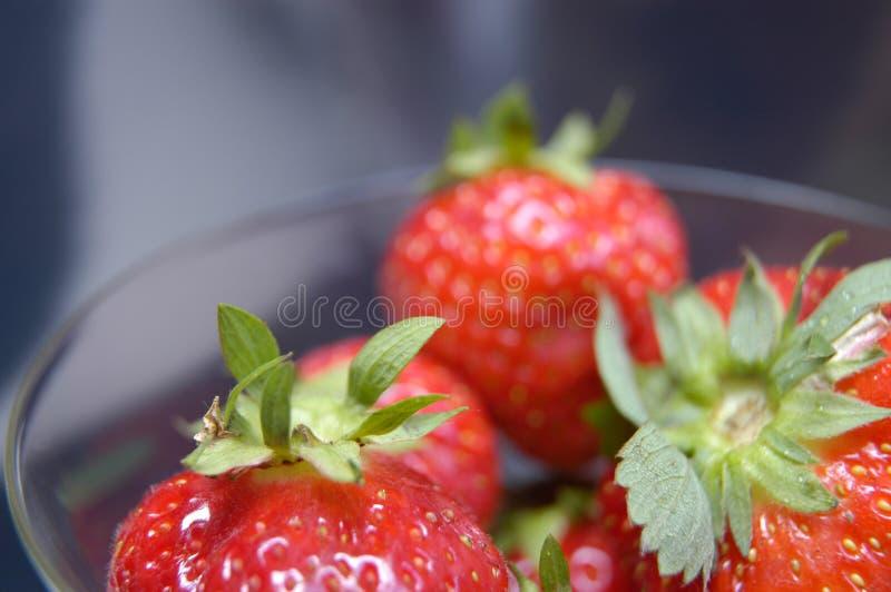 Wet strawberries II stock photos