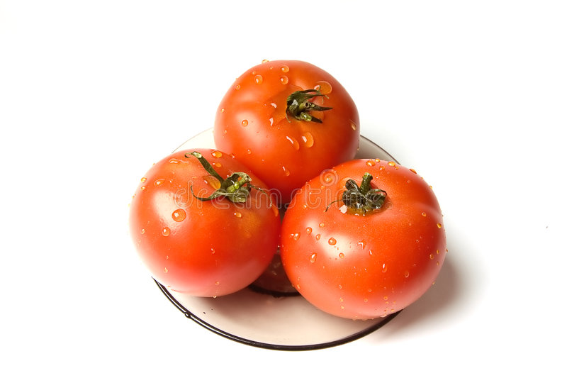 Download Wet tomatoes stock photo. Image of juicy, backgrounds - 1913714